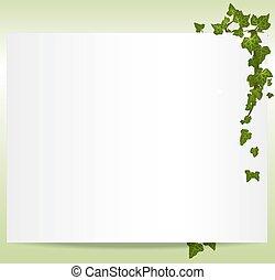 рамка, вектор, spring/summer, leaves, плющ