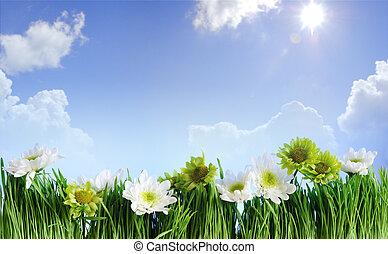 рамка, цветок, трава, зеленый