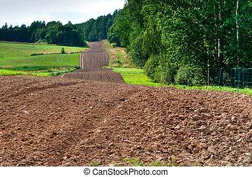 рано, весна, сельхозугодий, поле, ploughed