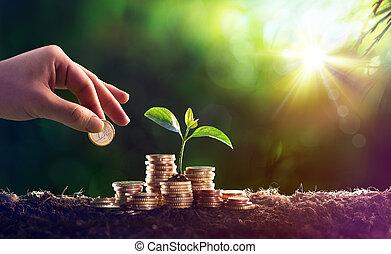 растение, концепция, деньги, coins, -, экономия, выращивание, инвестиции
