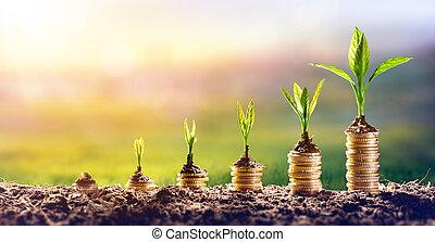 растение, концепция, финансы, деньги, coins, -, выращивание, инвестиции