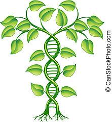 растение, концепция, dna