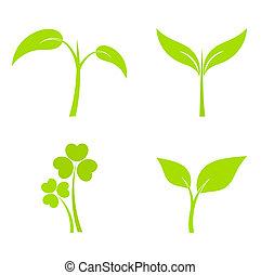 растение, icons