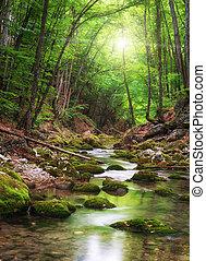 река, глубоко, лес, гора
