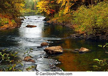 река, лес, падать