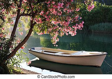 река, лодка