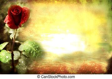 роза, гранж, красный, карта