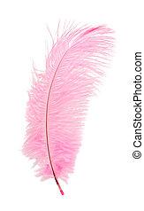 розовый, перо
