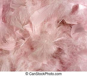 розовый, пушистый, перо, задний план