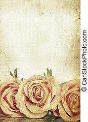 розовый, roses, задний план, марочный