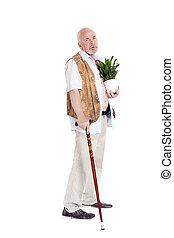 рука, человек, тростник, пожилой, цветочный горшок