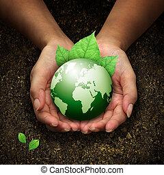руки, держа, земля, зеленый, человек