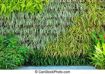 сад, вертикальный