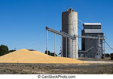 свая, зерно, лифт