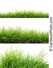 свежий, трава, зеленый, весна
