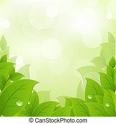 свежий, leaves, зеленый
