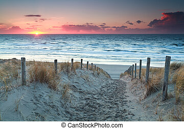 север, песок, закат солнца, море, дорожка, пляж, до