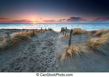 север, песок, закат солнца, море, дорожка, пляж