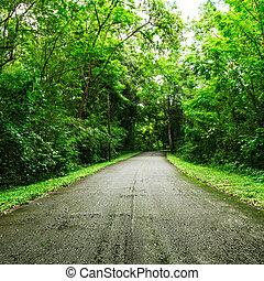 сельская местность, дорога