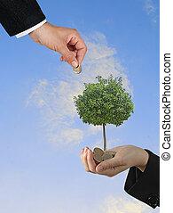 сельское хозяйство, инвестиции