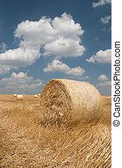 сельское хозяйство, стог сена, -