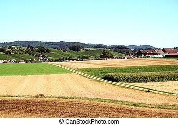 сельскохозяйственное, земельные участки