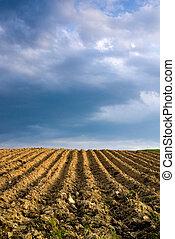 сельскохозяйственное, ploughed, пейзаж