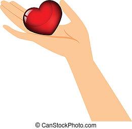 сердце, держа, рука
