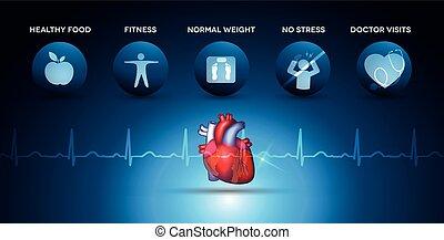 сердце, кардиология, icons, анатомия, здоровье, забота