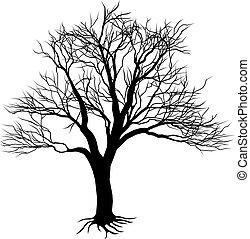силуэт, голый, дерево