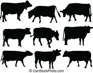 силуэт, корова