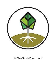 символ, дерево
