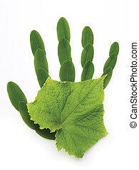 символ, изобразительное искусство, экологический, рука, природа