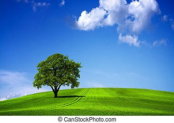 синий, зеленый, небо, пейзаж, природа