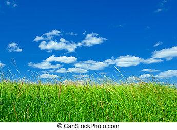 синий, зеленый, трава, небо, задний план