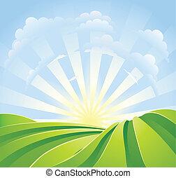 синий, идиллический, поля, солнечный свет, небо, rays, зеленый
