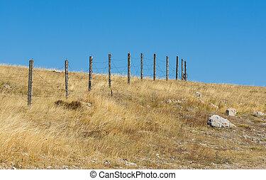 синий, колючая проволока, барьер, небо, против, безоблачный
