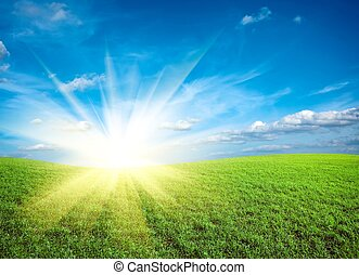 синий, небо, зеленый, поле, закат солнца, под, свежий, трава