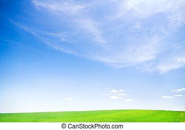 синий, небо, над, зеленый, поле