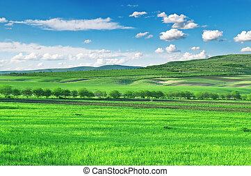 синий, небо, поле, mountains
