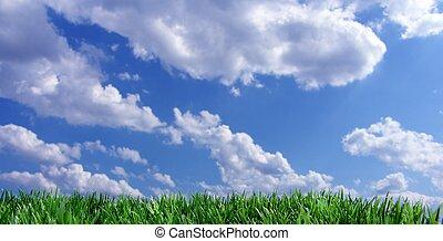 синий, небо, трава, зеленый