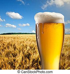 синий, пшеница, стакан, небо, против, поле, пиво