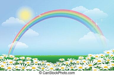 синий, радуга, небо, daisies, против
