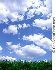 синий, свежий, небо, зеленый, gras