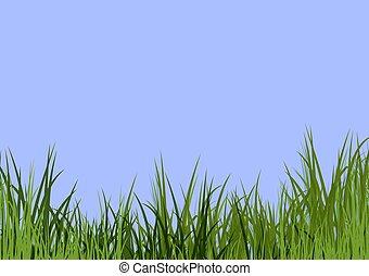 синий, трава, небо, &