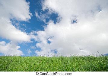 синий, трава, небо