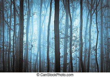 синий, ужасный, trees, темно, туман, форрест