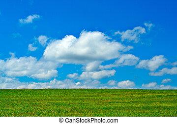 синий, clouds, небо, зеленый, поле, белый