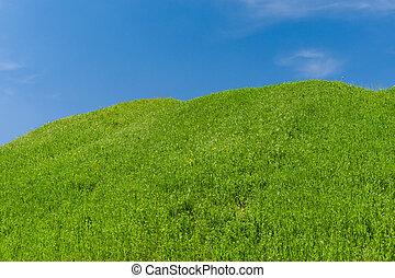 синий, hills, небо, против, зеленый, пейзаж