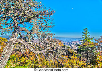 синий, mountains, хребет, север, каролина